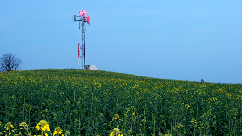 Radio Tower in Field